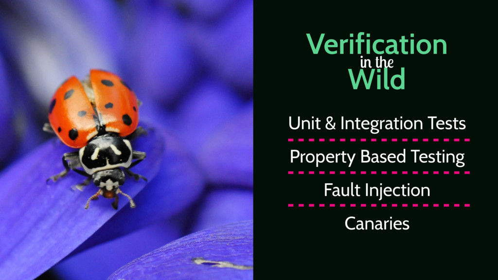 Verification Wild in the Unit & Integration Tes...