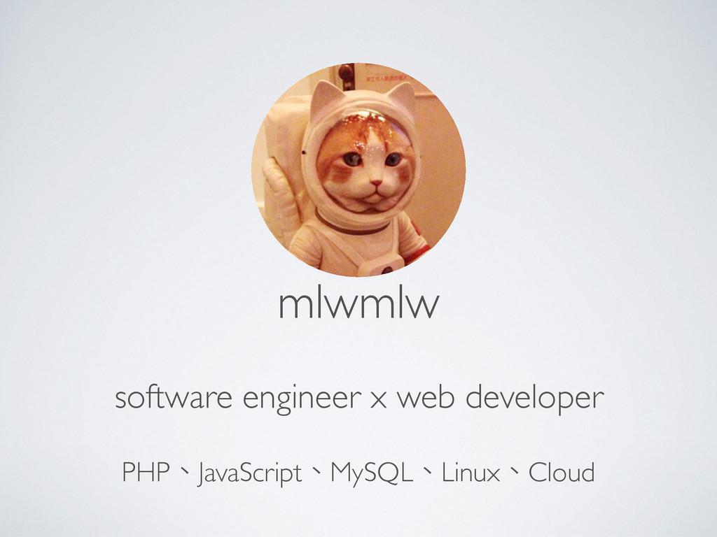 mlwmlw software engineer x web developer PHP、Ja...