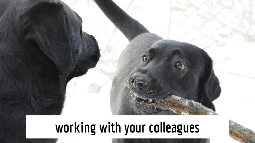 working with your colleagues