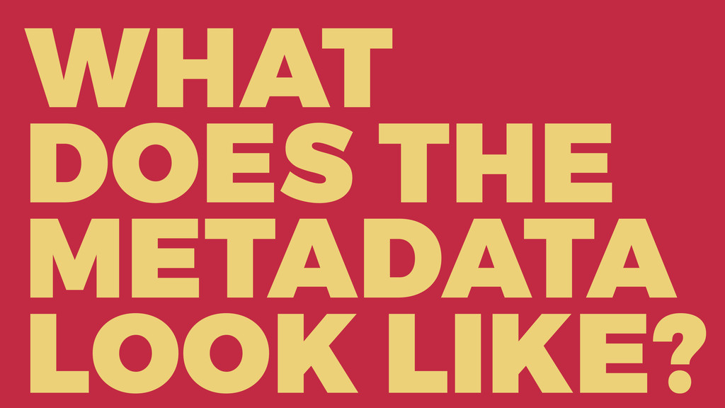 WHAT DOES THE METADATA LOOK LIKE?