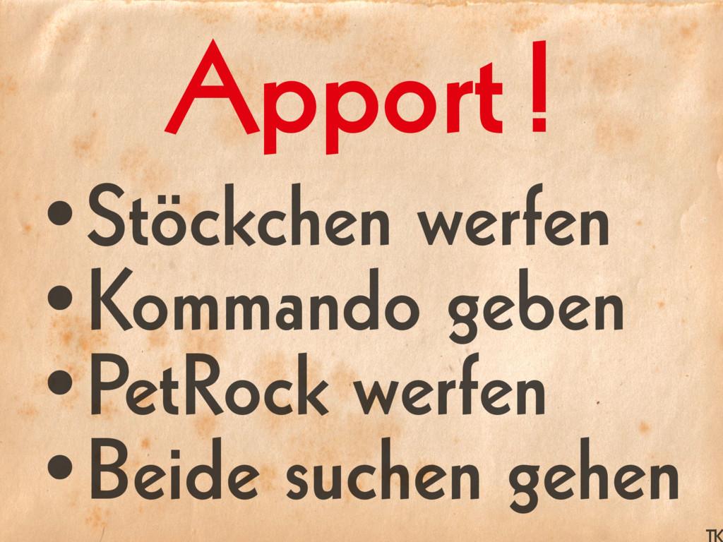 •Stöckchen werfen •Kommando geben •PetRock werf...