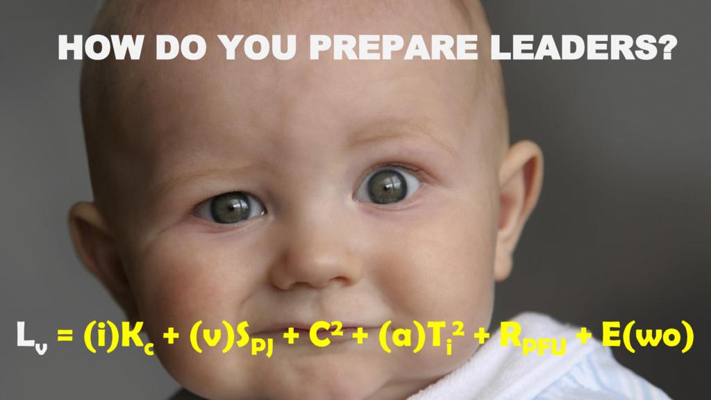 HOW DO YOU PREPARE LEADERS? L v = (i)K c + (v)S...