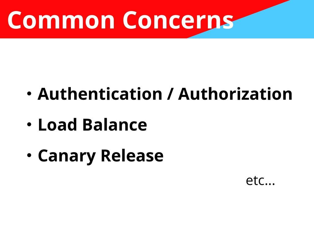 Common Concerns ɾAuthentication / Authorization...