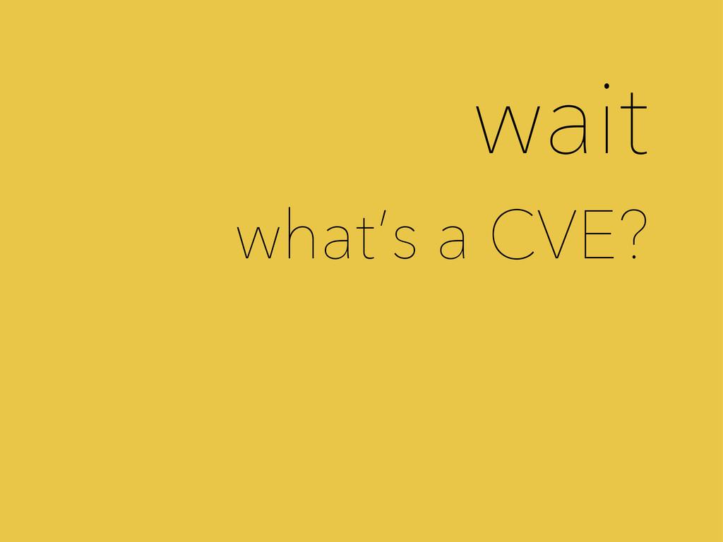 wait what's a CVE?