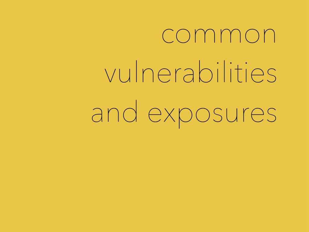 common vulnerabilities and exposures