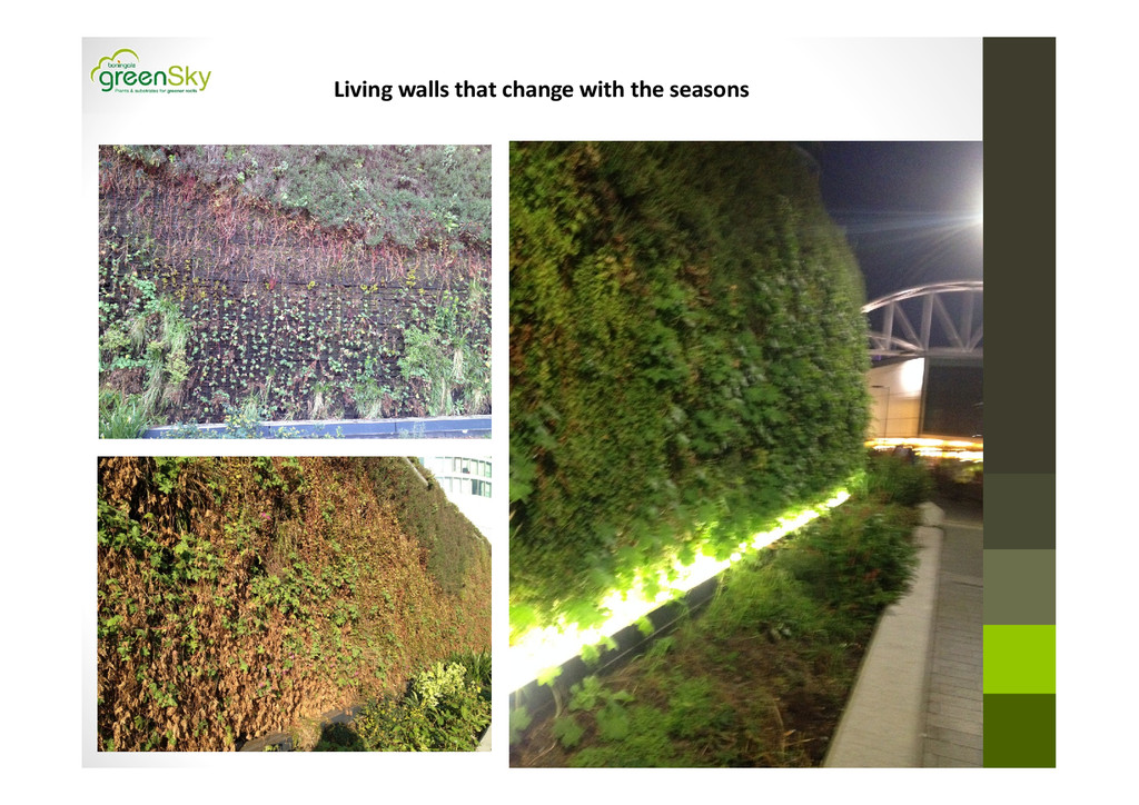 Living walls that change with the seasons