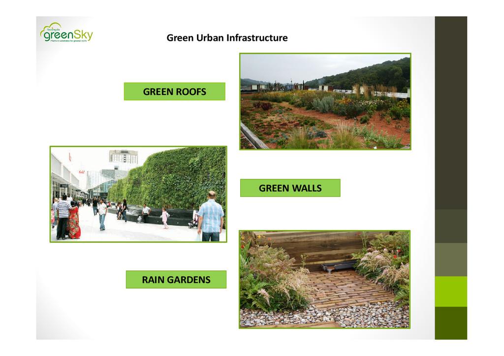 GREEN ROOFS GREEN WALLS RAIN GARDENS Green Urba...
