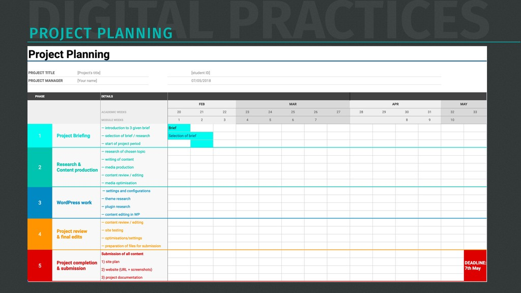 DIGITAL PRACTICES PROJECT PLANNING