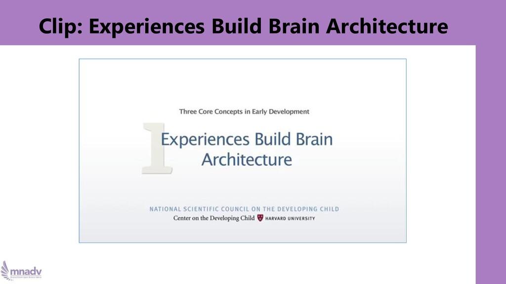 Clip: Experiences Build Brain Architecture
