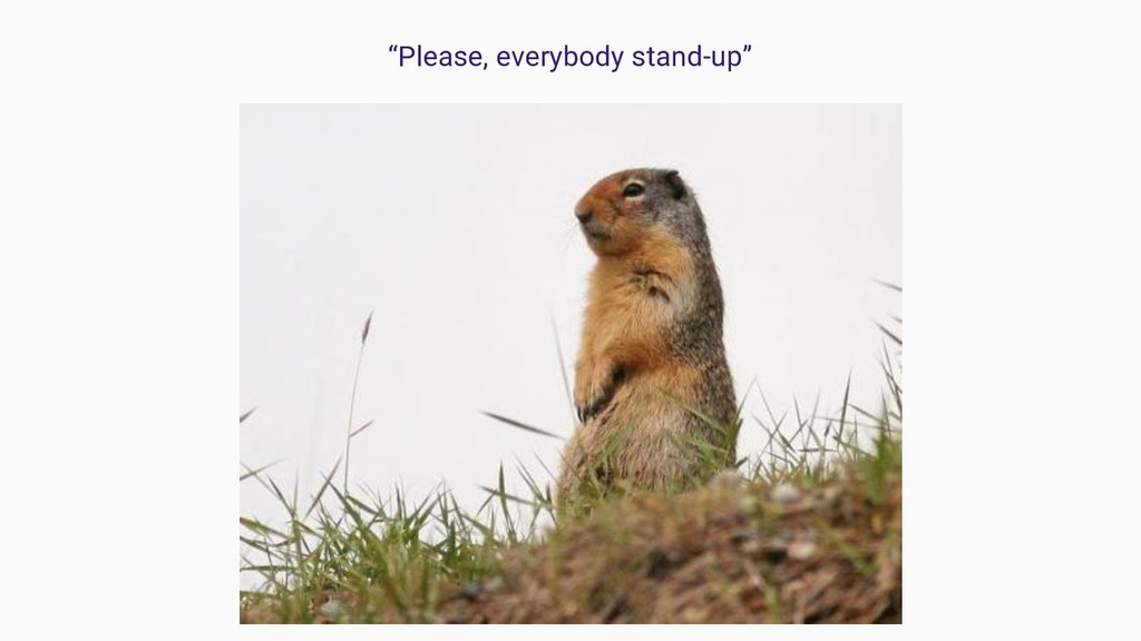 """Please, everybody stand-up"""