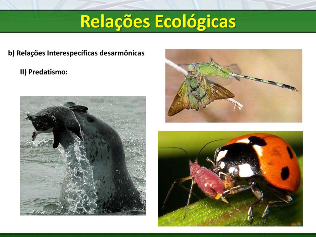 b) Relações Interespecíficas desarmônicas II) P...