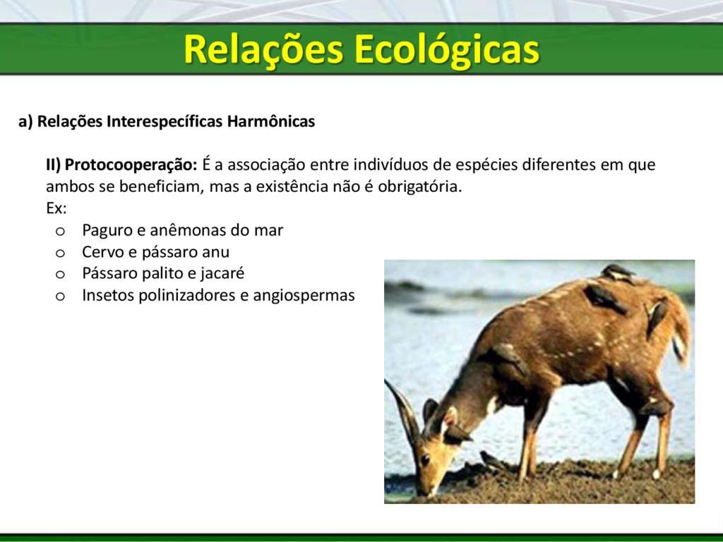 a) Relações Interespecíficas Harmônicas II) Pro...