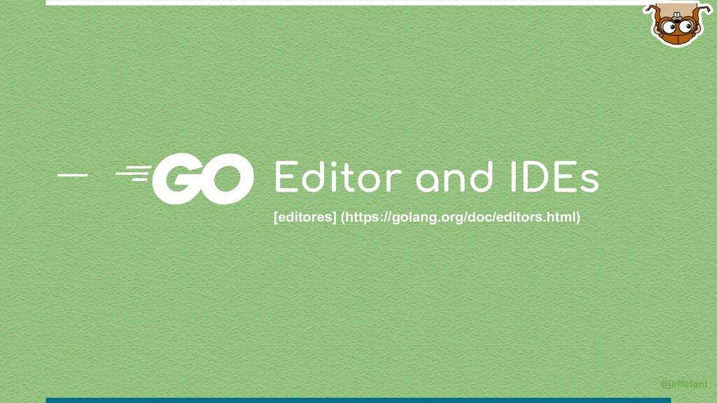 Editor and IDEs [editores] (https://golang.org/...
